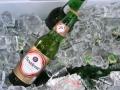 Dominican-Beer