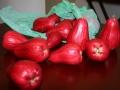 Vegetable-624x416