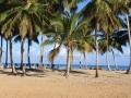 beach-chairs-trees