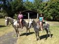 horses-2-2girls-1024x767
