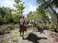 horsetrail-lagoon-treeline